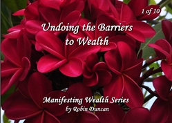 Undoing the Barriers to Wealth by Robin Duncan